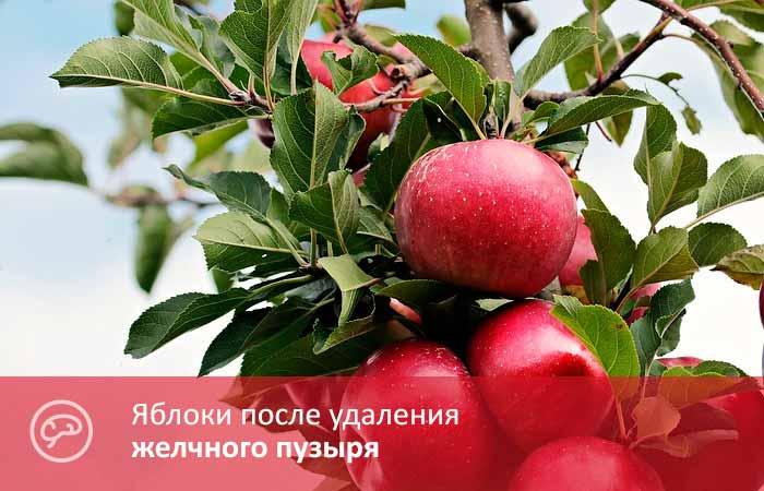 Яблоки после удаления желчного пузыря