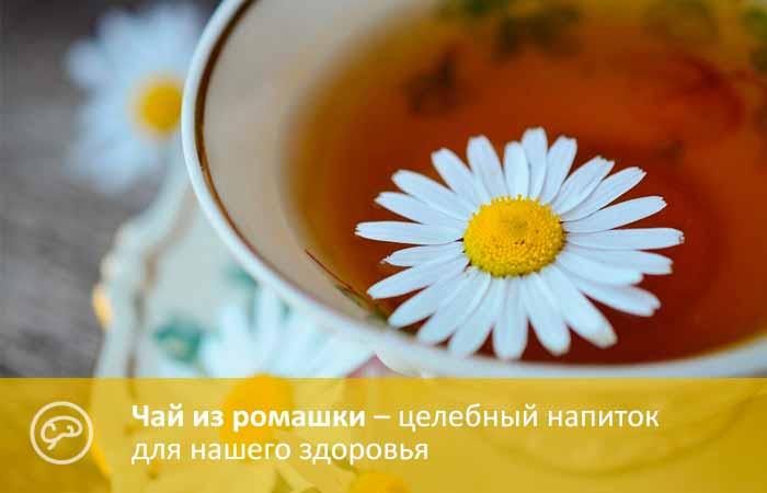 Чем полезен ромашковый чай в пакетиках
