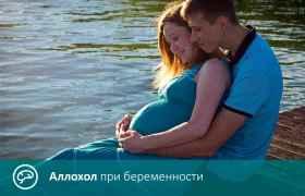 Аллохол при беременности