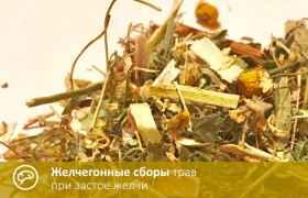 Желчегонные сборы трав при застое желчи