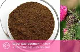 Шрот расторпши – ключ к восстановлению печени
