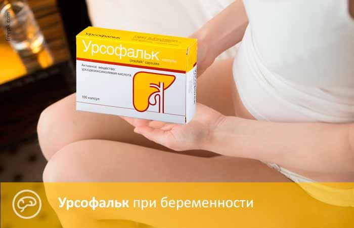 Урсофальк при беременности